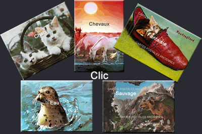 Cartes postales anciennes Animaux
